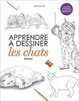 Apprendre à Dessiner Les Chats 9782501121439 Amazoncom Books
