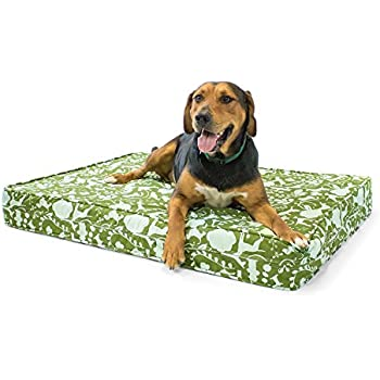 "Amazon.com : Orthopedic Dog Bed - 5"" Thick Supportive Gel"
