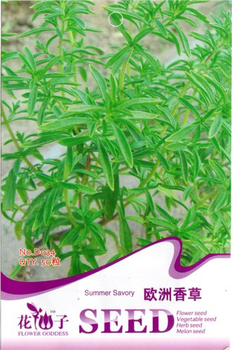 Vanilla Seed 50 Rare Herb Grass Seeds European Green Natural Plant HOT D034 By Mikedaoe