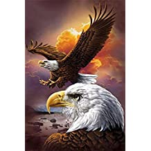 DIY 5D Diamond Painting by Number Kits, Crystal Rhinestone Diamond Embroidery Paintings Pictures Arts Craft for Home Wall Decor, Eagle