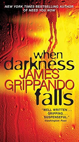 When Darkness Falls (Jack Swyteck Book - Falls The Miami
