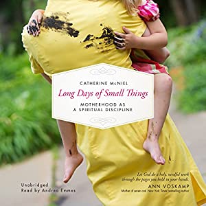 Long Days of Small Things Audiobook