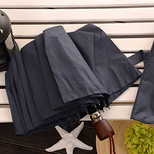 10 Bone Semi-Automatic Umbrella Folding Men's Business Umbrella Weather Umbrella Simple Fashion Gaozs (Color : #2) (Summary Of The Umbrella Man By Roald Dahl)
