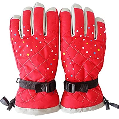 BIAL Fashion Women's Winter Windproof Warm Full Finger Gloves for Cycling Hiking Skiing Traveling