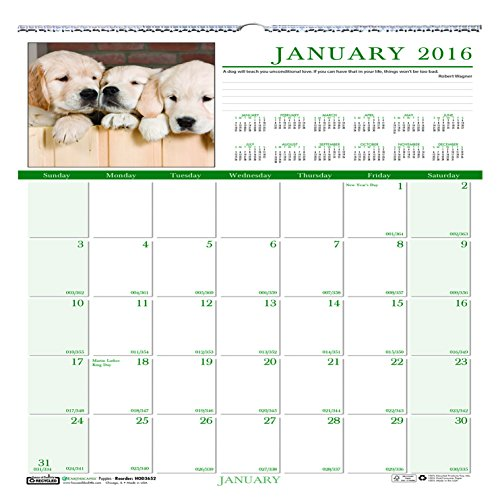 Earthscapes Puppies Wall Calendar (House of Doolittle 2016 Monthly Wall Calendar, 12