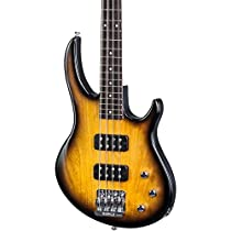Gibson USA New EB Bass 4-String T 2017 Bass Guitar, Satin Vintage Sunburst