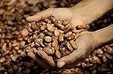 Belcolade Premium Dutch Cocoa Powder - CP1 Powder