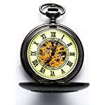 Steampunk Vintage Luminous Roman Letters Skeleton Mechanical Pocket Watch with Chain 7