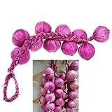 Mrotrida Artificial Garlic Strings Fake Vegetable Fruit Garland Home Kitchen Party Wedding Decor