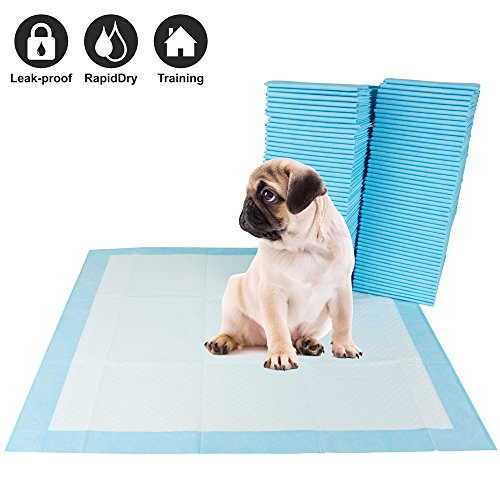 BV 100 Piece Pet Training Pads for Dog and Puppy, Rapid-Dry Technology For Sale