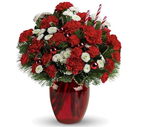 Philadelphia Christmas Fresh Flower Arrangement – Standard (Christmas Flowers)