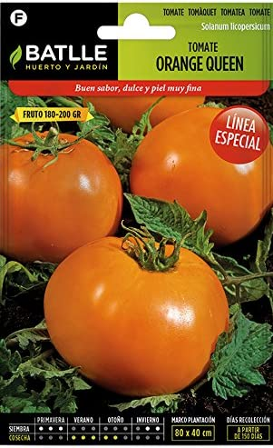 Semillas Hortícolas - Tomate Orange Queen - Batlle: Amazon.es: Jardín