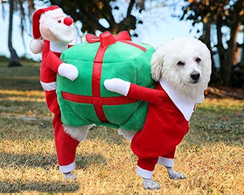 Mirabelle Christmas Pet Dog Clothes Large Winter for