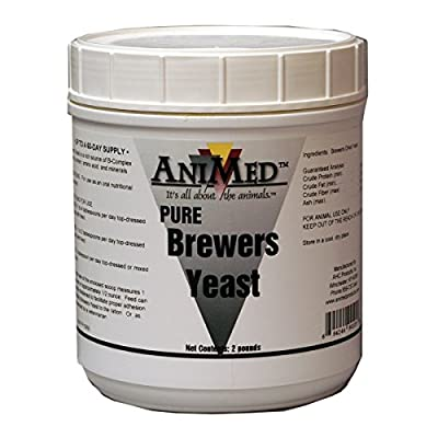 Brewers Yeast Supplement