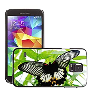 Super Stella Slim PC Hard Case Cover Skin Armor Shell Protection // M00106355 Butterfly Black White Nature Insect // Samsung Galaxy S5 S V SV i9600 (Not Fits S5 ACTIVE)