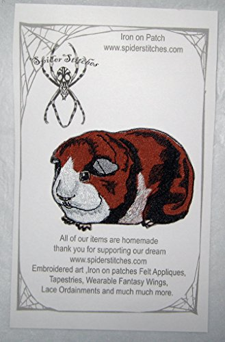 Cute Tri Colored Guinea Pig Iron on (Homemade Pig Costumes For Halloween)