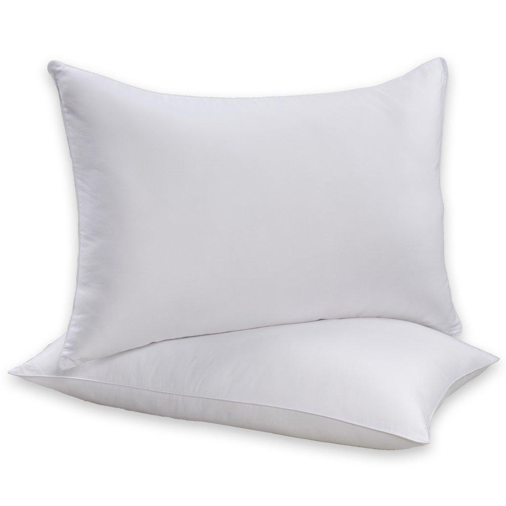 Beautyrest Sneeze Less Pillow, Two Pack, Standard