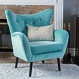 Christopher Knight Home 296216 Alyssa Arm Chair, Light Blue