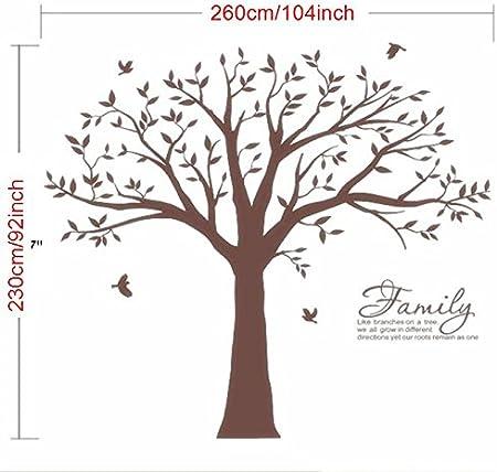 marron Sticker mural g/éant arbre photo de famille avec inscription Family Like Branches on a Tree