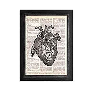 Anatomical Human Heart - Printed on Upcycled Vintage Dictionary Paper - 8 x11  Anatomy Art Poster / Print