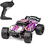 DBXMFZW 1/18 Scale Off-Road Remote Control Car Model High Speed Brake Drift RC Vehicle PVC Crash and Fall Resi