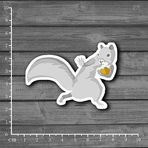 (Friends store Protection Pinecone Squirrel Stationery Graffiti Suitcase Sticker Decor for Ablum Scrapbooking Laptop Notebook Sticker[Single])