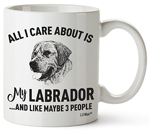 Labrador Mom Gifts Mug Women Men Dad Decor Lover Decorations Stuff I Love Labradors Coffee Merchandise Accessories Talking Art Apparel Funny Birthday Gift Home Supplies Products Dog Coffee Cup Mugs