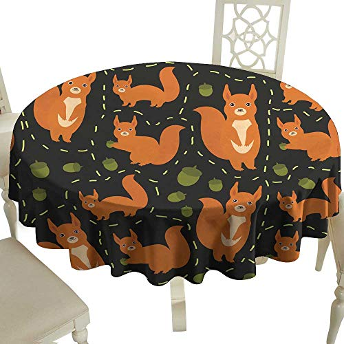 WinfreyDecor Decorative Textured Fabric Tablecloth Seamless Pattern Set of Funny red Squirrels with Fluffy Tail with Acorn on Black Background Vector Great for Buffet Table D43