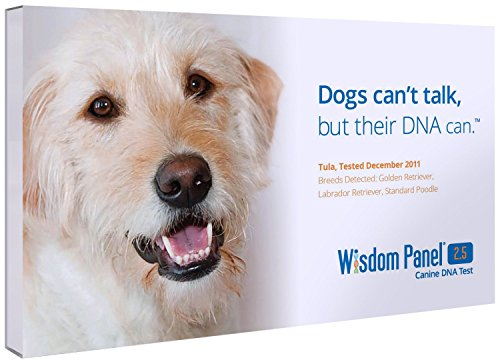 Mars Veterinary Wisdom Panel 2.5 Breed Identification DNA Test Kit - 2 Pack for 2 Dogs