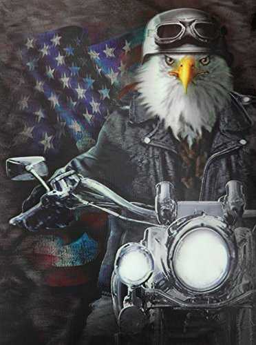 Bald Eagle Stained Glass - Those Flipping Pictures-UNFRAMED Parent (Bald Eagle Riding Harley)