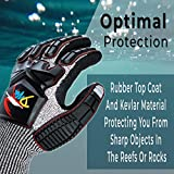 Lobster Gloves for Diving | Kevlar Spearfishing