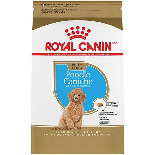 Royal Canin Puppy Poodle Dry Dog Food (2.5 lb)