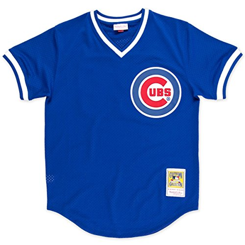 Blue Batting Practice Baseball Jersey - Mitchell & Ness Ryne Sandberg Chicago Cubs #23 Men's 1984 Authentic Mesh Batting Practice Jersey (L/44)