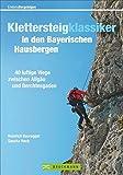 Klettersteigklassiker in den Bayerischen Hausbergen: 40 luftige Wege zwischen Allgäu und Berchtesgaden