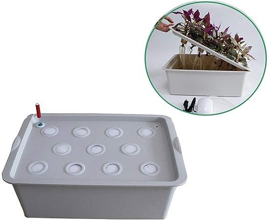 El Cultivo Los Hogares Aireación Tipo Agua Semillero Caja Balcón Cultivo Sin Suelo 11 Orificios Aireación + Tipo Temporización Vegetal Cultivo Hidropónico Plantas: Amazon.es: Hogar