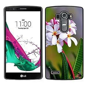 // PHONE CASE GIFT // Duro Estuche protector PC Cáscara Plástico Carcasa Funda Hard Protective Case for LG G4 / Flores blancas /