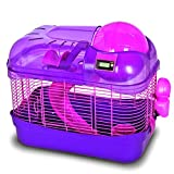 Ware Manufacturing Spin City Health Club Habitat - Purple