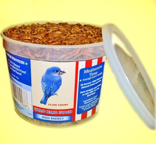 Mealworm Tub - 6