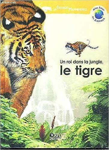 Couverture de Un roi dans la jungle, le tigre