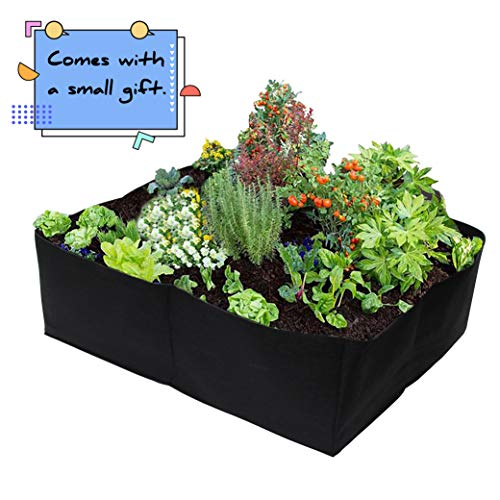 Top 10 Raised Garden Bed 24 Inches Deep