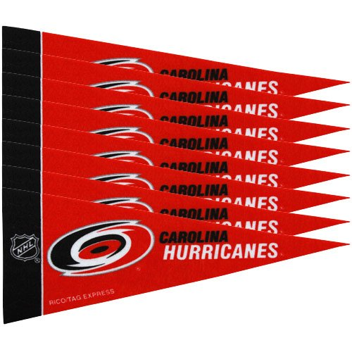 Rico NHL Hurricanes 8 Pc Mini Pennant Pack Sports Fan Home Decor, Multicolor, One Size by Rico