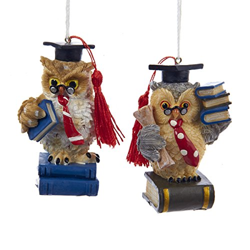 Kurt Adler 3 inch teacher owls