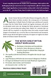 Reefer Sanity: Seven Great Myths About Marijuana