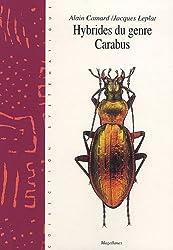 Les hybrides du genre Carabus : Volume 10