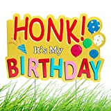 WATINC Honk! It's My Birthday Yard Sign with Metal Stakes Waterproof Lawn Decoration for Happy Party Parade Large Colorful Single Sided Honk Signs for Outdoor 11.8 x 16.9 in