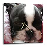3dRose Boston Terrier Puppy – Wall Clock, 13 by 13-Inch (dpp_22237_2) Review