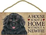 (SJT63948) A house is not a home without a Newfie (Newfoundland) wood sign plaque 5