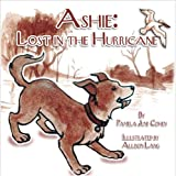 img - for Ashie: Lost in the Hurricane book / textbook / text book