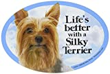 Prismatix Decal Cat and Dog Magnets, Silky Terrier
