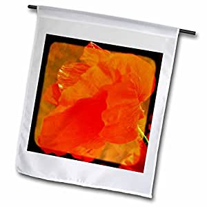 Patricia Sanders Flowers - Dancing Red Poppy Flower- Floral Photography - 12 x 18 inch Garden Flag (fl_47228_1)